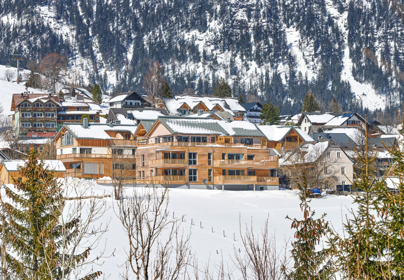 Exterior appearance with view over the mountains in the holiday home flat Penthouse Grimming Adler Lodge D7.1 in Tauplitz