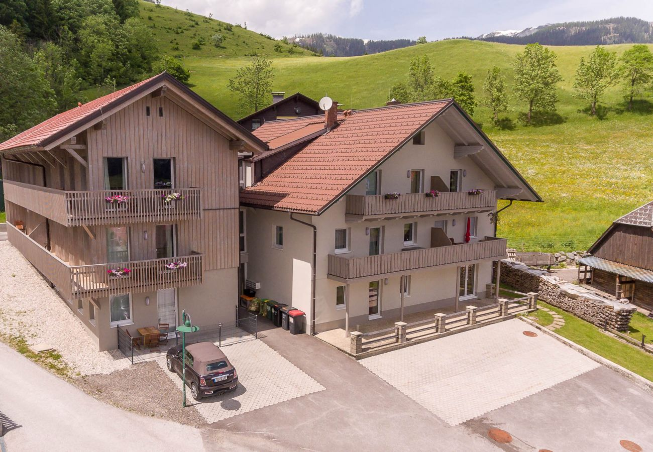 Exterior view from above of the holiday home Grimming Lodge Goldrute in Tauplitz