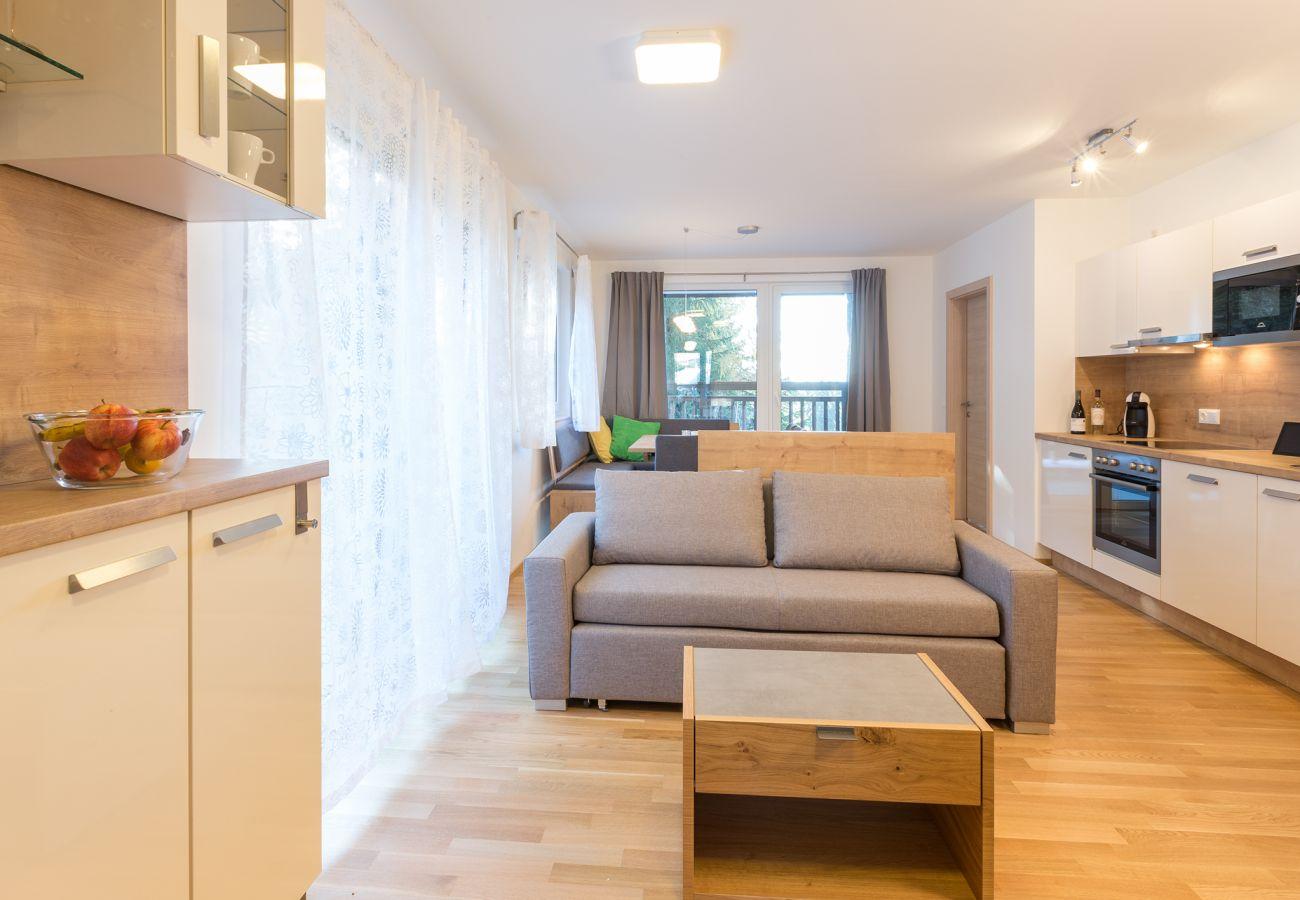 Ferienwohnung in Schladming - Apartment Fastenberg Top 2